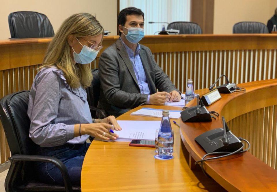 Gonzalo Caballero e Paloma Castro durante a Comisión de Reconstrución